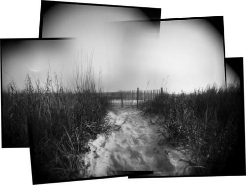 film beach grass holga sand escape dunes atlanticocean snowfence longwalksonthebeach kodakhc110dilutionh holdenbeach2011 expiredtxp320