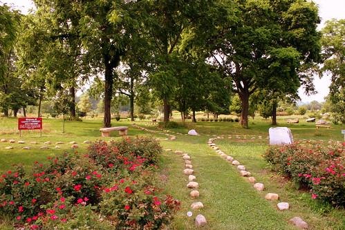 Harvey's Gardens