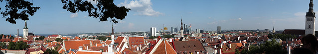 Day 203. Tallinn Old Town panorama