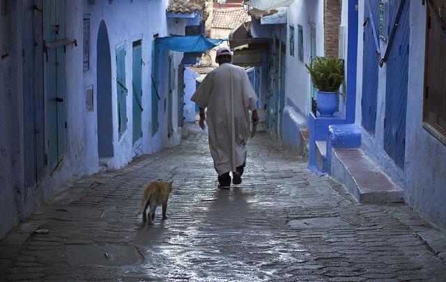 Vanha mies ja kissa Sinisessä Kaupungissa, Chefchaouen