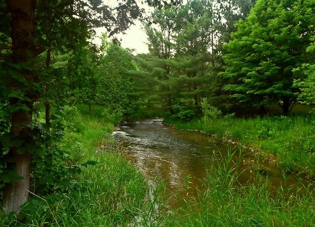 The upper upper platte river flickr photo sharing for Platte river michigan fishing