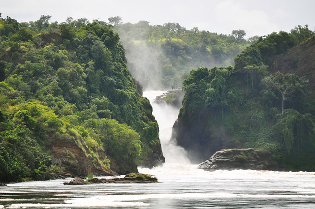 Murchison Falls - Falls