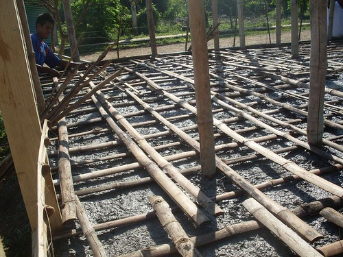 bambú guadua varillaverde aceroverde 600kgxcm2 losacoladaconbambú
