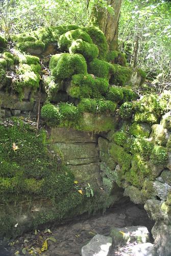 abandoned spring ruins fort tennessee springs bledsoe bledsoes castalian