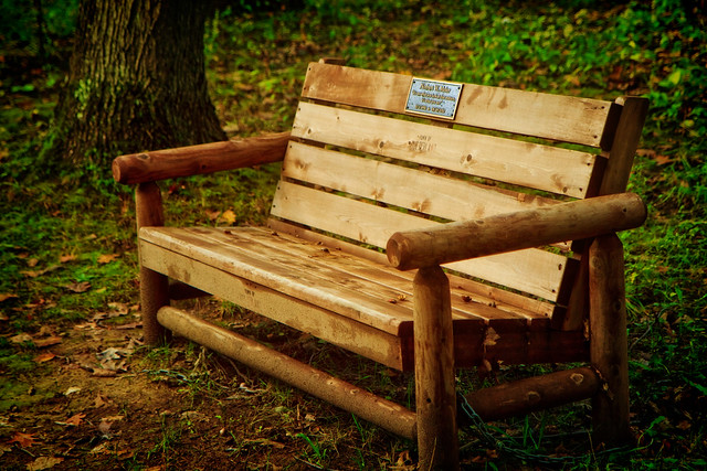 A Park Bench in Guilderland, NY