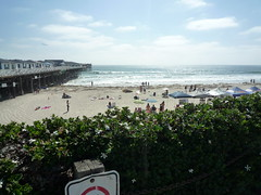 Crystal Pier and Surf Contest
