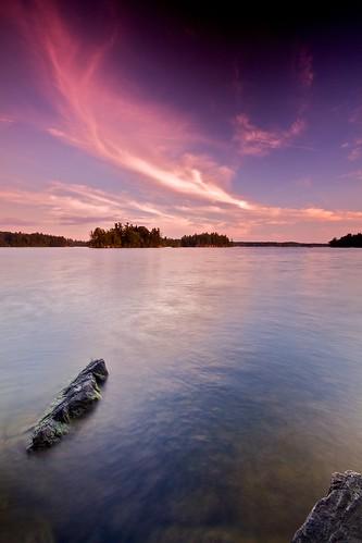 trees sunset lake ontario canada southfrontenac loughboroughwater