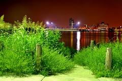 Louisville and grass