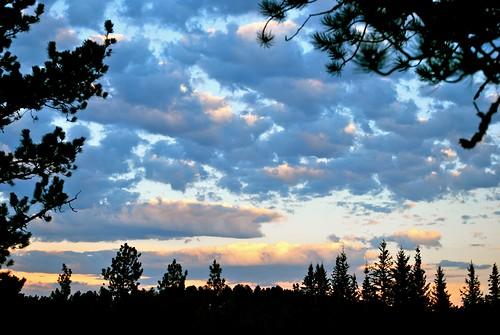 trees sunset sky nature beauty clouds southdakota blackhills forest evening nikon view deck sd blackhillsnationalforest