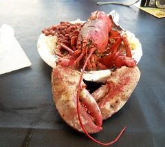 crab(0.0), animal(1.0), seafood boil(1.0), lobster(1.0), crustacean(1.0), fish(1.0), seafood(1.0), invertebrate(1.0), food(1.0), dish(1.0),