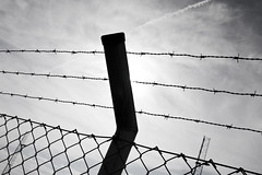 wire fencing, chain-link fencing, barbed wire, fence, line, monochrome photography, iron, monochrome, black-and-white, sky,