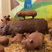 chocolate pig by liangjinjian