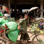 Bicycle Rickshaw Hauls Vegetables - Srimongal, Bangladesh