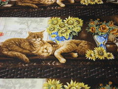 napping cats, brown
