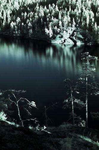 cliff lake reflection tree nature water forest finland landscape geotagged kallio infrared puu maisema vesi luontokuva metsä luonto naturephotography järvi puita maisemakuva heijastus linnavuori sulkava infrapuna luontokuvaus luonnonvalokuvaus sulkavanlinnavuori