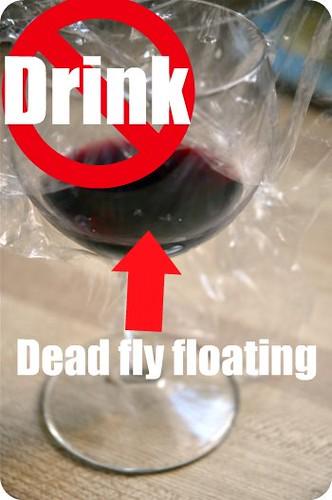 My fruit fly trap!