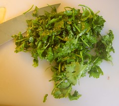 apiales(0.0), flower(0.0), plant(0.0), produce(0.0), herb(1.0), food(1.0), coriander(1.0),