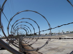 wire fencing, barbed wire, fence, electricity, iron,