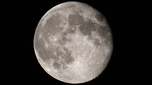moon1 copy