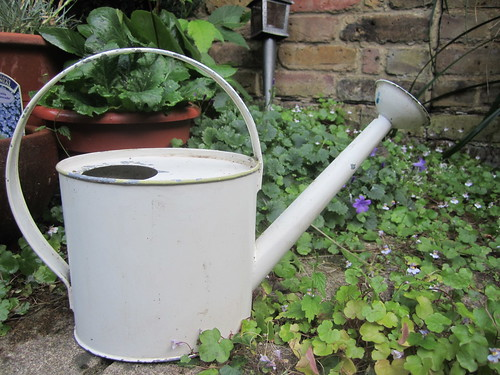 Foraged Watering Can