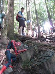 Spider-Man at the half-way point of the Grouse Grind