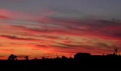 Highfields Farm Sunsets