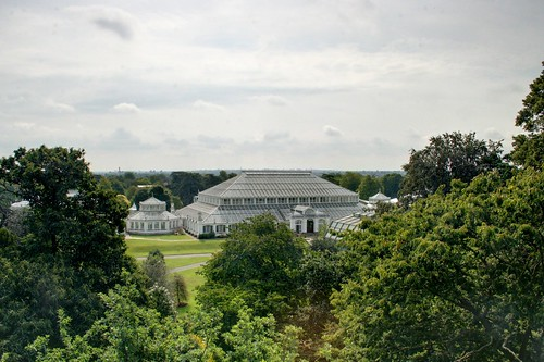 Looking down on the Temperate House