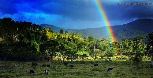 A ponta do arco íris