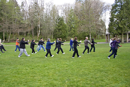 "Foto ""World Tai Chi and Qigong Day"" by Devon D'Ewart  - flickr.com"