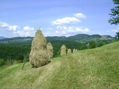 maramureș