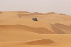 wadi(0.0), grassland(0.0), erg(1.0), sand(1.0), aeolian landform(1.0), natural environment(1.0), desert(1.0), landscape(1.0), sahara(1.0), singing sand(1.0),