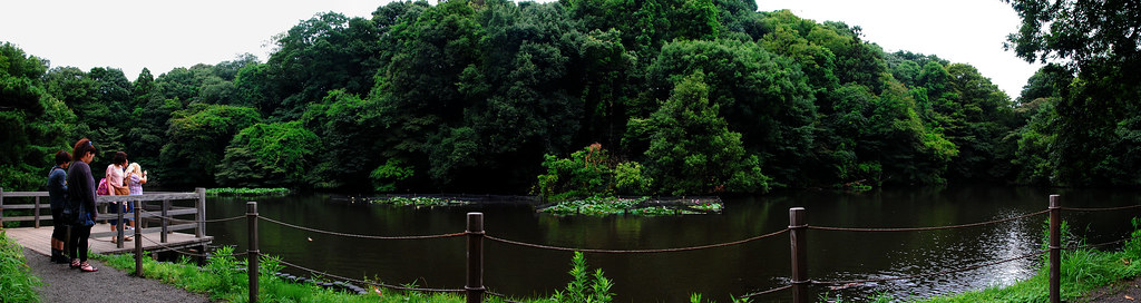 Parque Yoyogi (Zona Templo Meiji Jingu)