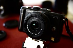 DMC-GF1 with 20mmF1.7