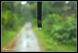 A drop of rain falls gently on my umbrella and slowly rolls off. I was watching this with a bit of curiosity.