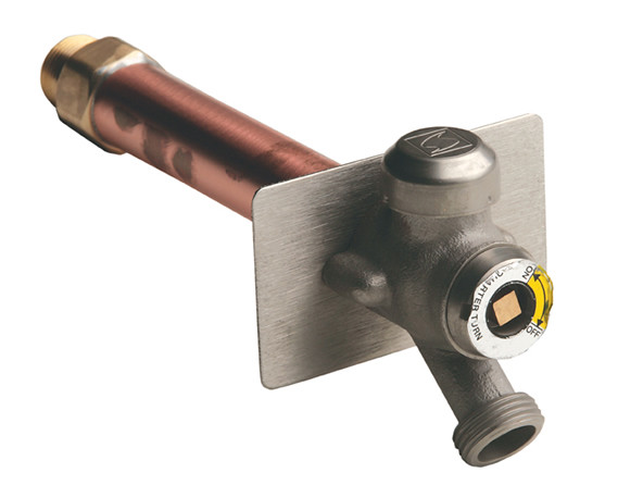 5609qt Quarter Turn Non Freeze Wall Hydrant With Exposed