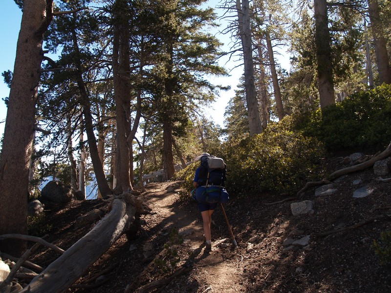 Hiking on the San Bernardino Peak Trail above Manzanita Spring