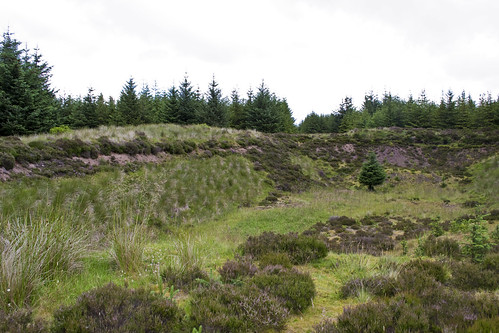 Remains of an old Quarry