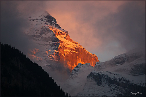 Swiss Alps on Fire - The Jungfrau Seen at Sunset [Explored]
