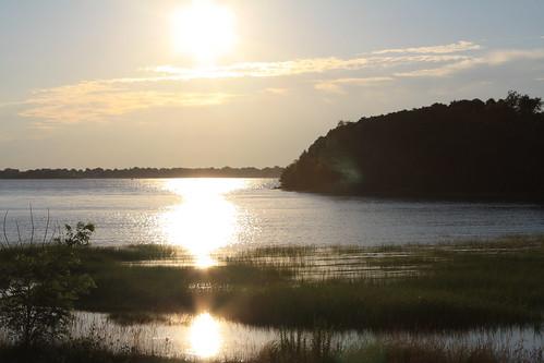 Webb Memorial Park Shoreline 05