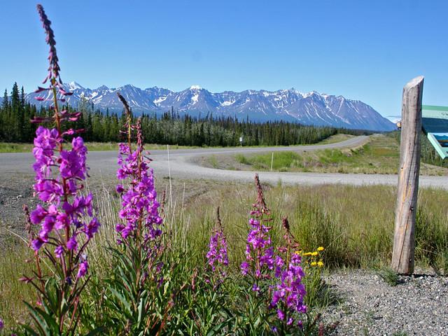 Dinali-Alaska