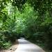 Small photo of Alpharetta Greenway