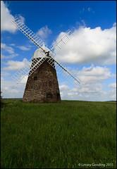 Halnaker Windmill [185/365]