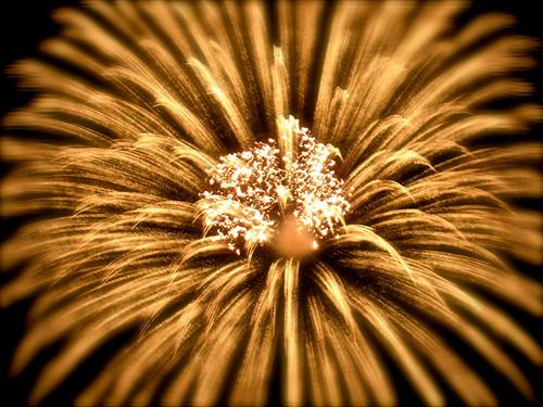 gold washington fireworks explosion sparkle pacificnorthwest pioneerpark tumwater