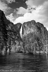 Yosemite Falls (black & white)