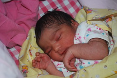 Dreams Within A Dream Nerjis Asif Shakir- 1 Day Old by firoze shakir photographerno1