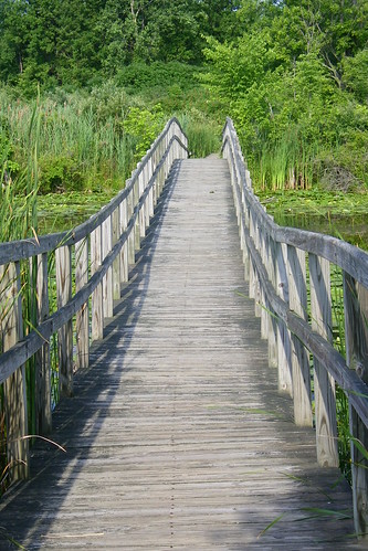 Crosswinds Marsh (Sumpter Township, Michigan)
