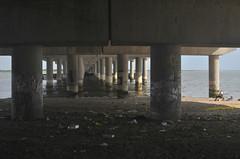 Jamaica Bay / Underpass, Boy, Fisherman