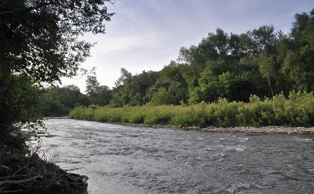 Mississauga's Riverwood Conservancy