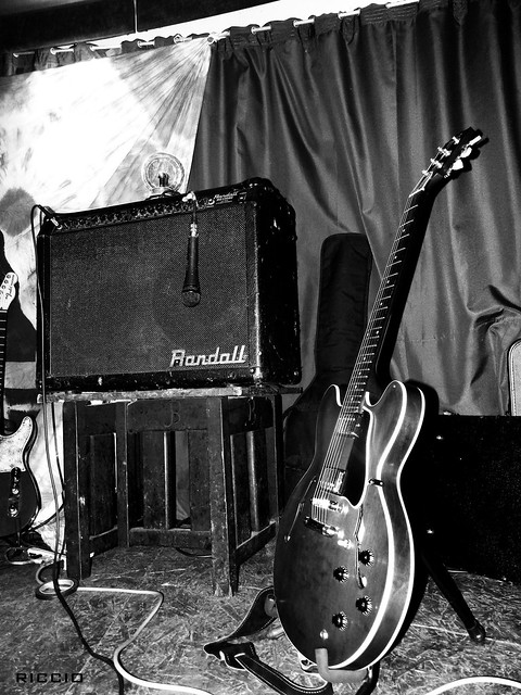Photo:Gibson es-335 By Riccio L