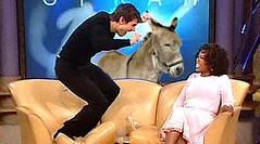 Mule-Tom Cruise